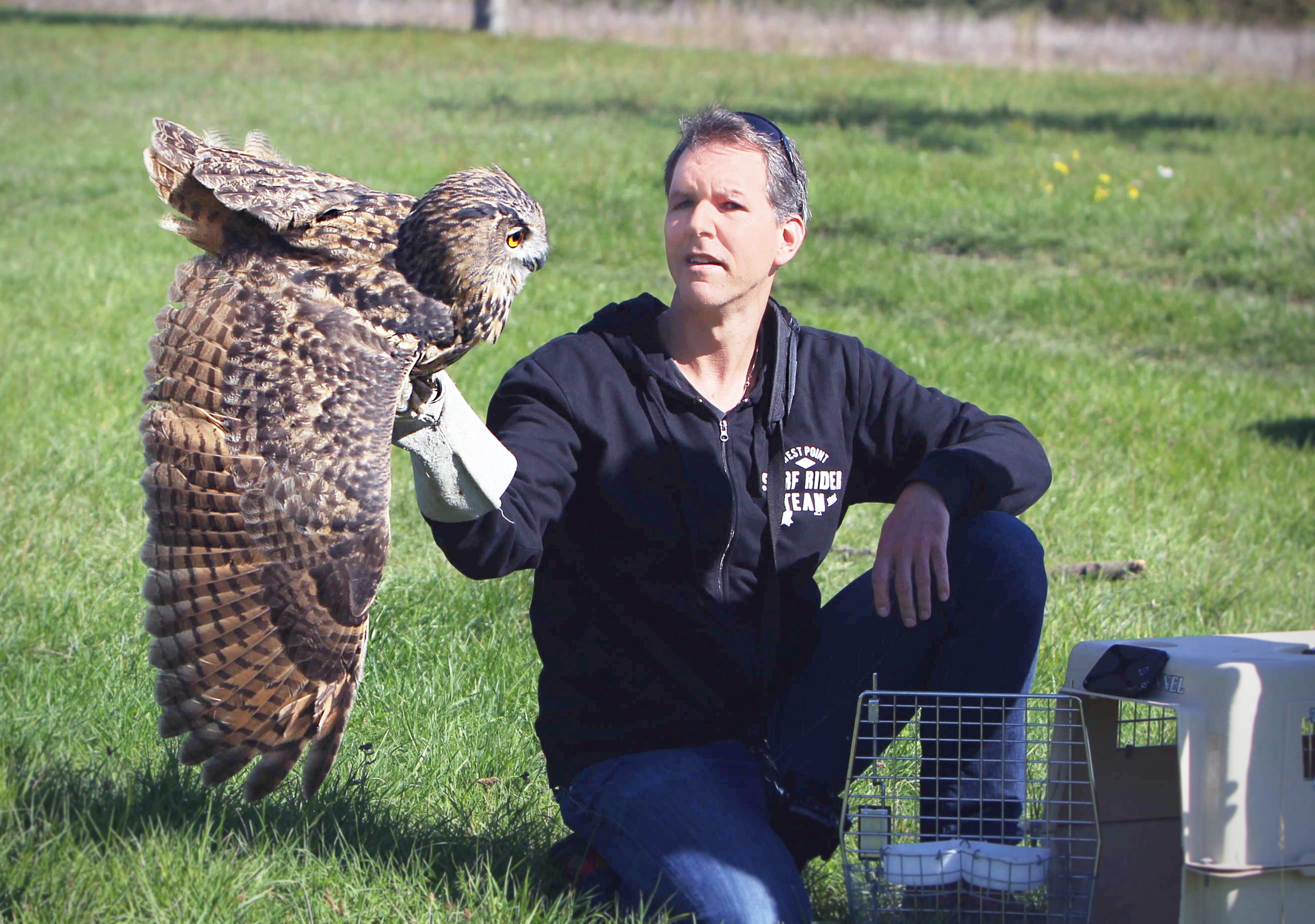 Tierarzt Vogel Kirchhain