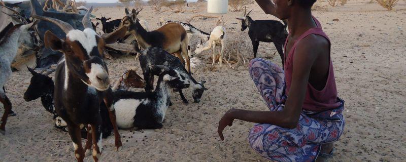 Impfen für Afrika – in diesem Jahr am  9. Mai
